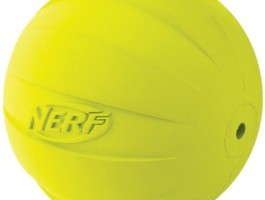Nerf Rubber ball dog toy